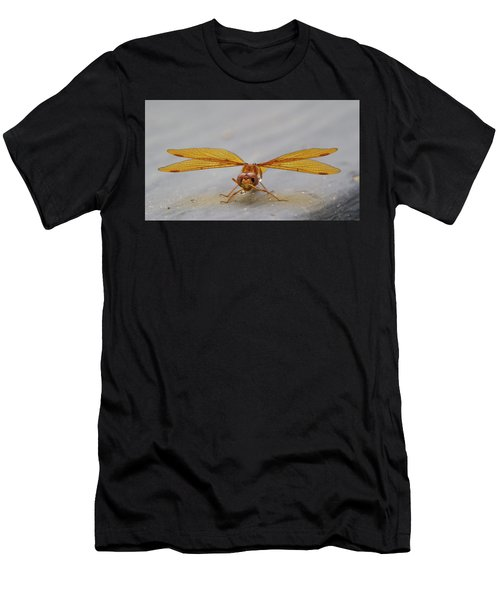 Dragon Fly Hanging Around Men's T-Shirt (Athletic Fit)