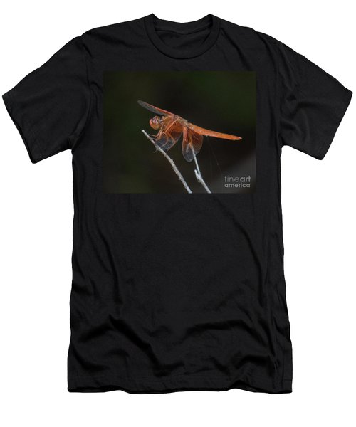 Dragonfly 11 Men's T-Shirt (Athletic Fit)