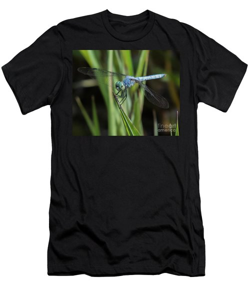 Dragonfly 13 Men's T-Shirt (Athletic Fit)