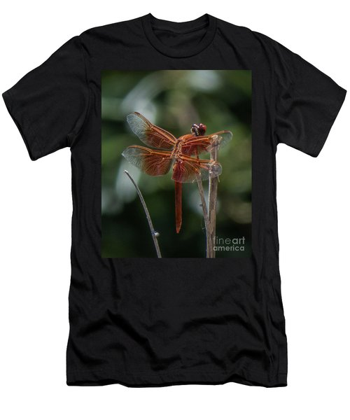 Dragonfly 9 Men's T-Shirt (Athletic Fit)