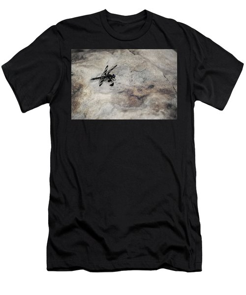 Dragonfly On Solid Ground Men's T-Shirt (Athletic Fit)