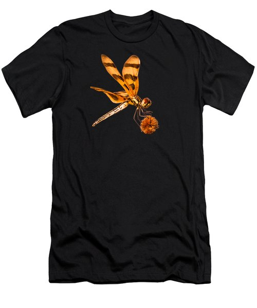 Dragonfly On Bur-reed Men's T-Shirt (Athletic Fit)