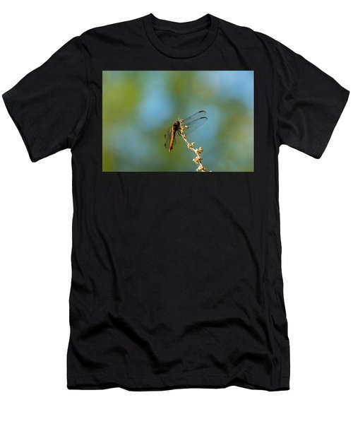 Dragonfly Wings Men's T-Shirt (Athletic Fit)