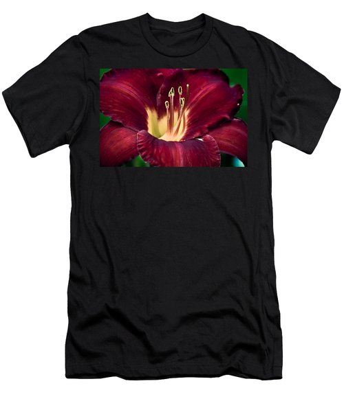 Dramatic Lily Men's T-Shirt (Athletic Fit)