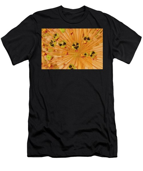 Dried Allium Seed Macro Men's T-Shirt (Athletic Fit)
