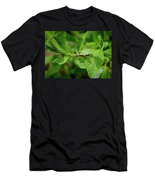 Droplets On Spring Leaves Men's T-Shirt (Athletic Fit)