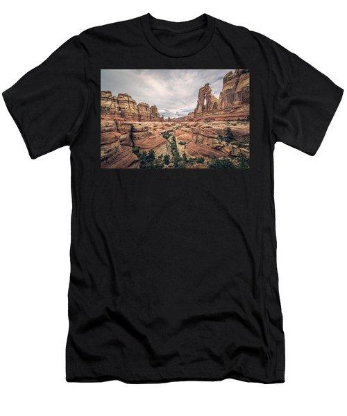 Druid Arch Men's T-Shirt (Athletic Fit)