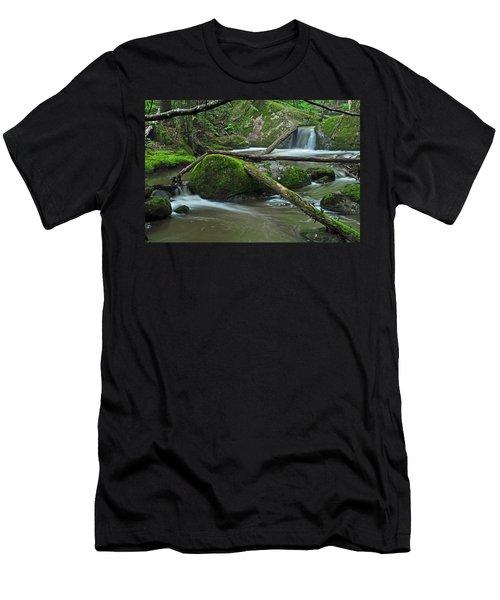 Dual Falls Men's T-Shirt (Slim Fit) by Glenn Gordon