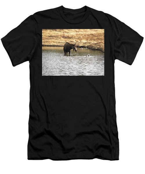 Ducks - Moose Rollinsville Co Men's T-Shirt (Athletic Fit)