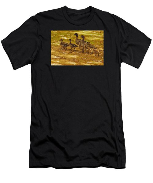 Duck Family II Men's T-Shirt (Athletic Fit)
