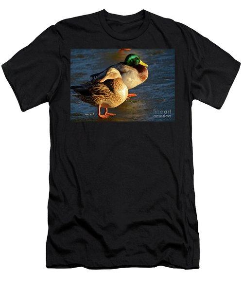 Duck Pair Sunbathing On Frozen Lake Men's T-Shirt (Athletic Fit)