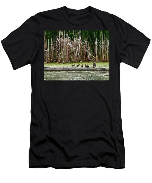 Ducks All In A Row Men's T-Shirt (Athletic Fit)
