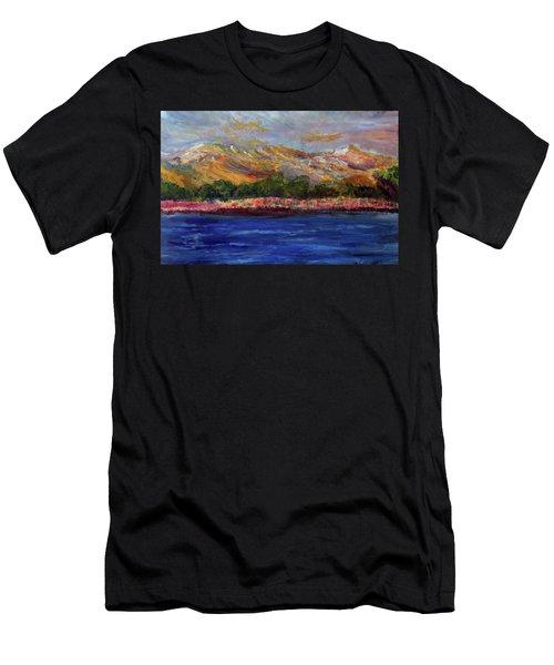 Dunes At Pilgrim Lake Men's T-Shirt (Athletic Fit)