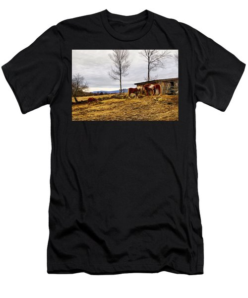 Dusk Feeding On The Farm Men's T-Shirt (Athletic Fit)