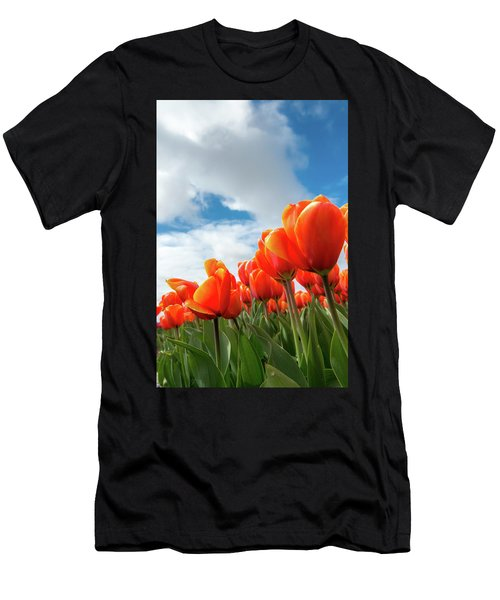 Dutch Tulips Near Keukenhof Men's T-Shirt (Athletic Fit)