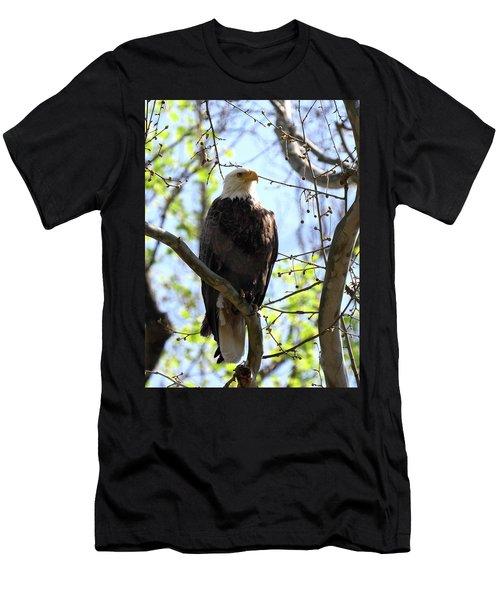 Eagle 1 Men's T-Shirt (Athletic Fit)