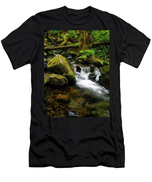Eagle Creek Cascade Men's T-Shirt (Athletic Fit)