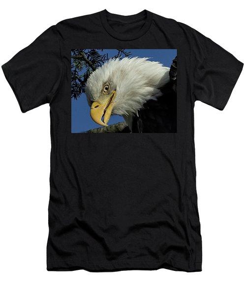 Eagle Head Men's T-Shirt (Athletic Fit)