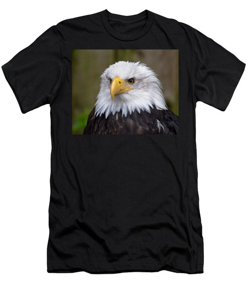 Eagle In Ketchikan Alaska Men's T-Shirt (Athletic Fit)
