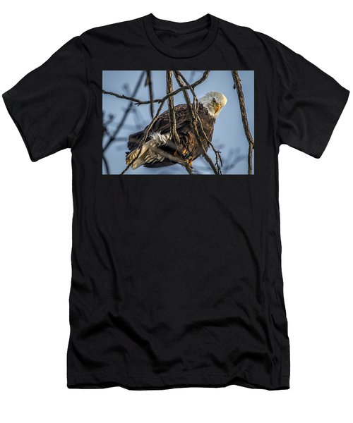 Eagle Power Men's T-Shirt (Slim Fit) by Ray Congrove