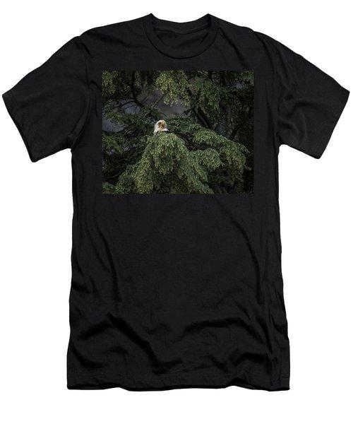 Eagle Tree Men's T-Shirt (Athletic Fit)