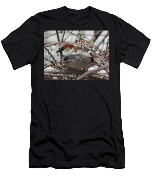 Early Bird Men's T-Shirt (Athletic Fit)
