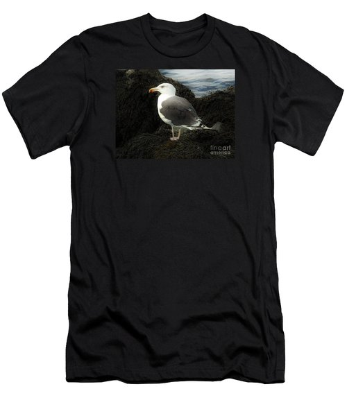 East Coast Herring Seagull Men's T-Shirt (Slim Fit) by Marcia Lee Jones