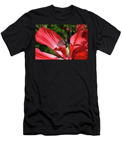 Eastern Tailed Blue Butterfly On Red Flower Men's T-Shirt (Slim Fit) by Inspirational Photo Creations Audrey Woods