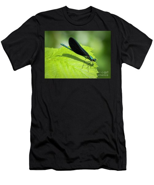 Ebony Jewelwing Men's T-Shirt (Athletic Fit)