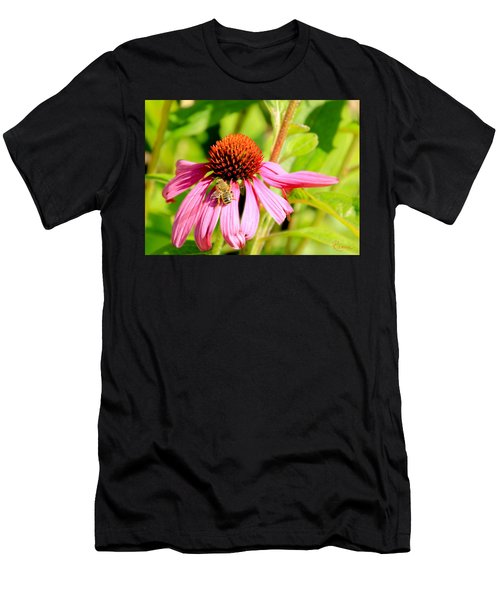 Echinacea Bee Men's T-Shirt (Athletic Fit)