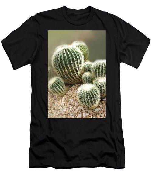 Echinocactus Grusonii  Men's T-Shirt (Athletic Fit)