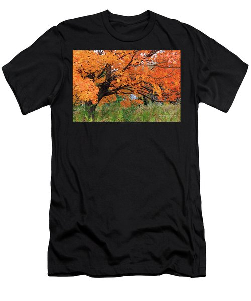 Edna's Tree Men's T-Shirt (Athletic Fit)