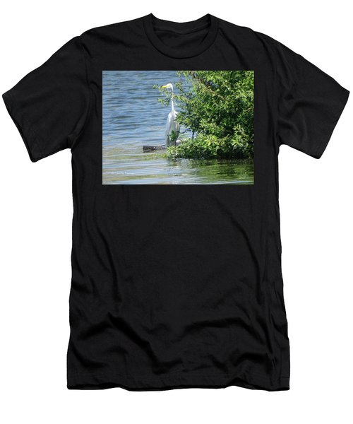 Great Egret In The Marsh Men's T-Shirt (Athletic Fit)