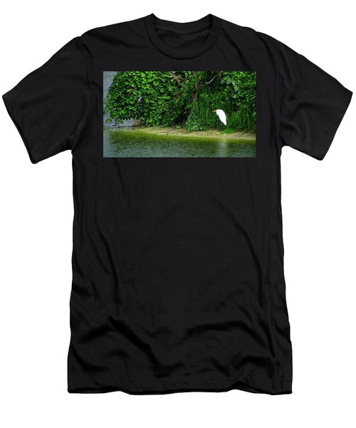 Egret Wakodahatchee Florida Wetlands Men's T-Shirt (Slim Fit) by David Mckinney