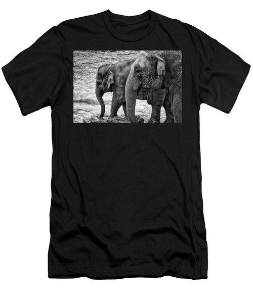 Elephants Bw Men's T-Shirt (Athletic Fit)