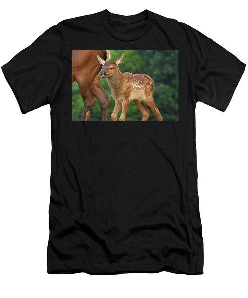 Elk Calf Arrives Men's T-Shirt (Athletic Fit)