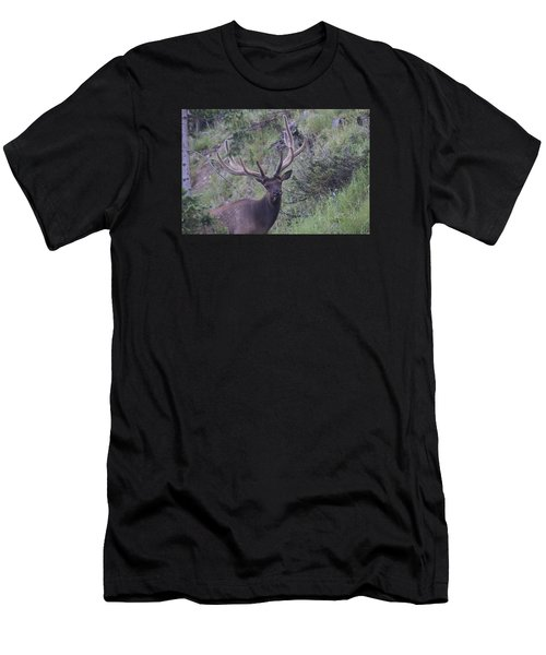 Men's T-Shirt (Athletic Fit) featuring the photograph Bull Elk Rmnp Co by Margarethe Binkley