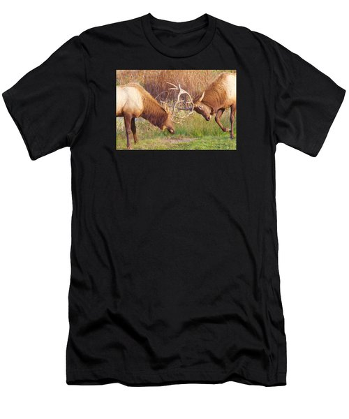 Elk Tussle Too Men's T-Shirt (Athletic Fit)