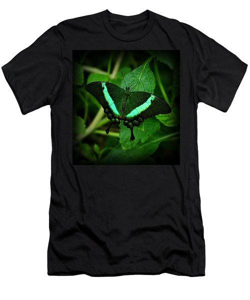 Emerald Swallowtail Men's T-Shirt (Athletic Fit)