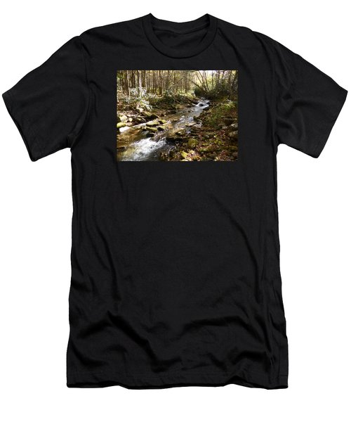 Enchanted Stream - October 2015 Men's T-Shirt (Slim Fit)