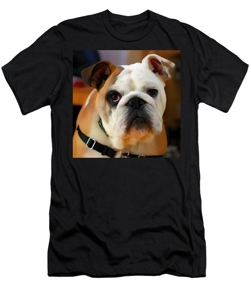 English Bulldog Men's T-Shirt (Athletic Fit)