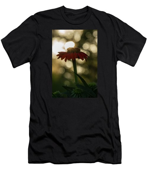 Men's T-Shirt (Slim Fit) featuring the photograph Evening Elegance by Penny Meyers