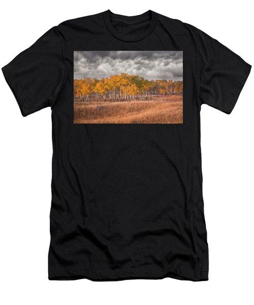 Evening Sun Men's T-Shirt (Athletic Fit)