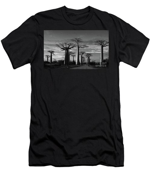 evening under the baobabs of Madagascar bw Men's T-Shirt (Athletic Fit)