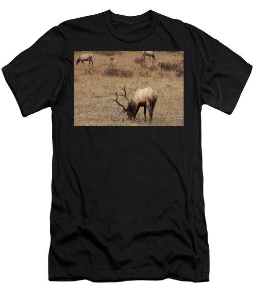 Faabullelk114rmnp Men's T-Shirt (Athletic Fit)
