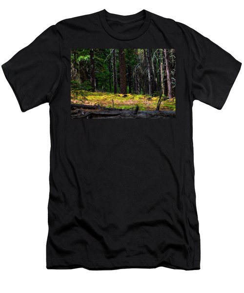 Cascade Mountain Range Fading Ferns Men's T-Shirt (Athletic Fit)