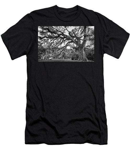 Fairchild Tree Men's T-Shirt (Athletic Fit)