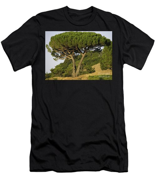 Fairfax Beauty Men's T-Shirt (Athletic Fit)