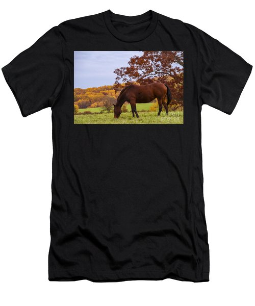 Fall And A Horse Men's T-Shirt (Athletic Fit)