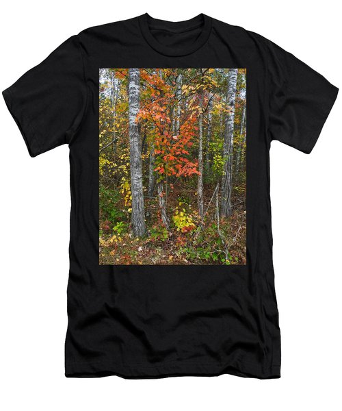 Fall Color At Gladwin 4543 Men's T-Shirt (Athletic Fit)